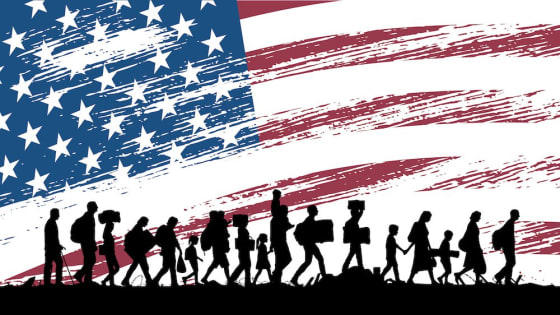 Guiding Principles for an Ideal Immigration System